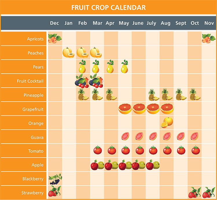 FRUIT-CROP-CALENDAR-HR